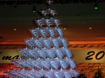 2009_1217_193029-CIMG0012.JPG